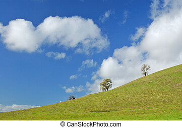 verdant hillside - verdant green hillside in spring with ...