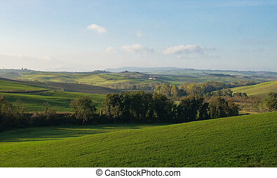 Verdant meadows - Green fields meadows and pastures of...