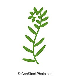 Verdant seperalinda seaweed isolated on white background. Logo for spa salon, massage, oceanarium, hotel, beach area. Beautiful green plant with leaves. Vector silhouette of a marine plant in flat style