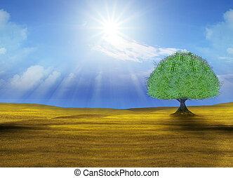 verde, árvore grande, em, campo amarelo