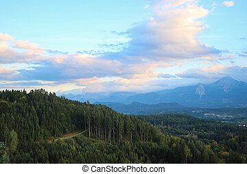 verde, altura, floresta, denso, vista, agradável, evening., montanhas