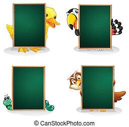 verde, animali, assi, vuoto, indietro