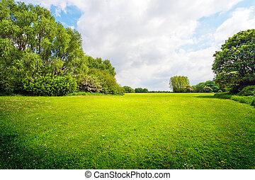 verde, ao ar livre, para, relaxamento