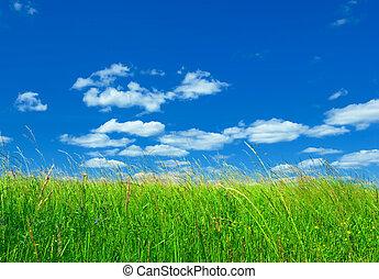 verde azul, capim, céu, fundo