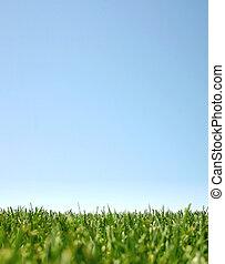 verde azul, grass:happyland, cielo