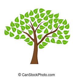 verde blanco, árbol, plano de fondo