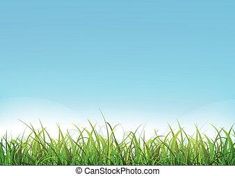 verde blu, erba, cielo, fondo