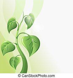 verde, brote, con, hojas, y, copyspace, para, su, texto