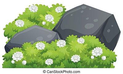 verde, bush, flores, jasmine