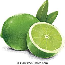 verde, calce