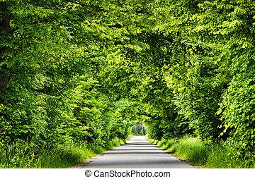 verde, camino, tunnel.