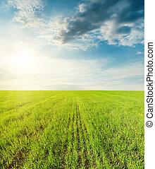 verde, campo agrícola, e, ocaso nuvens