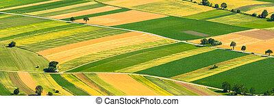 verde, campos, vista aérea