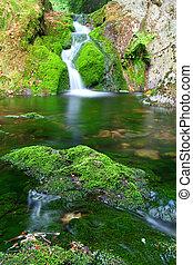 verde, cascata, cascata, flusso