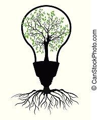 verde claro, árvore, bulbo