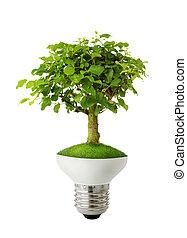 verde, conceito, energia