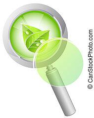 verde, concetto, foglia, natura