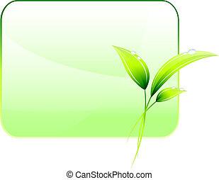verde, conservação ambiental, fundo