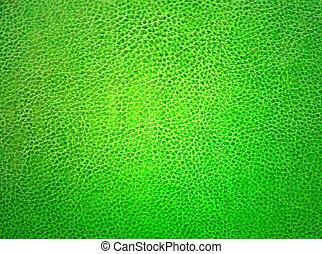verde, cuoio, materiale