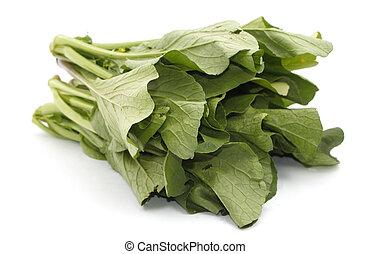 verde de mostaza, vegetal, encima, blanco