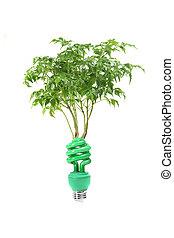 verde, energia, conceito, com, lightbulb, e, árvore, branco,...