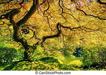 verde, espantoso, árvore