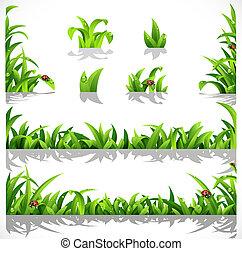 verde, exuberante, pasto o césped, con, rocío