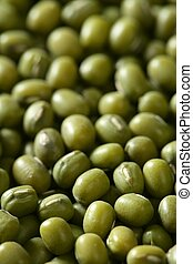 verde, feijões soya, textura