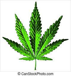 verde, folha cânhamo