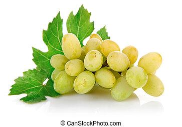 verde, folhas, fresco, uva, frutas