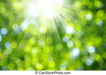 verde, fondo velado
