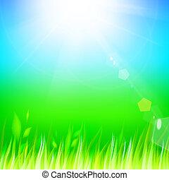 verde, grass.