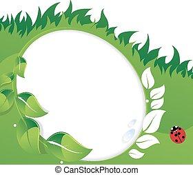 verde, hojas, mariquita