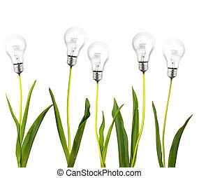 verde, idea, concepto