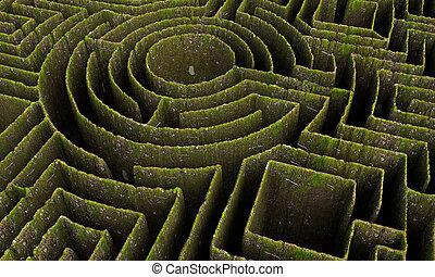 verde, labirinto