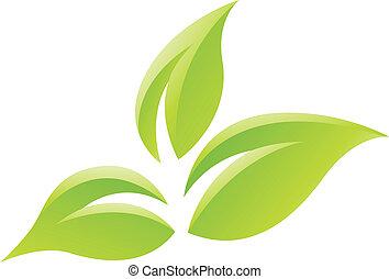 verde, lustroso, folhas, ícone