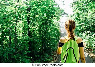 verde, luz solar, árvores, floresta