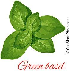 verde, manjericão, erva, folhas, isolado, ícone
