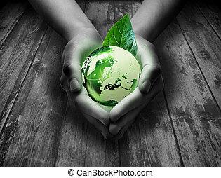 verde, mundo, en, el corazón, mano, -, gra