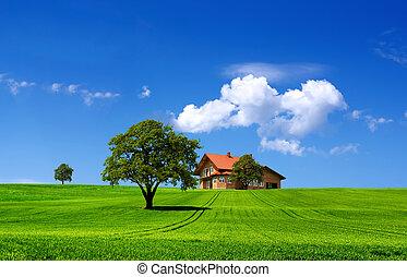 verde, paisagem natureza
