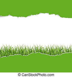 verde, papel rasgado, com, capim