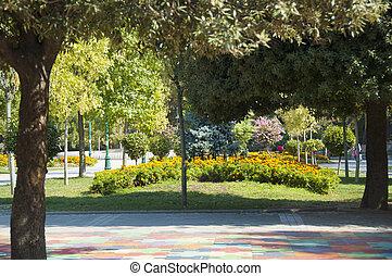 verde, parque de la ciudad