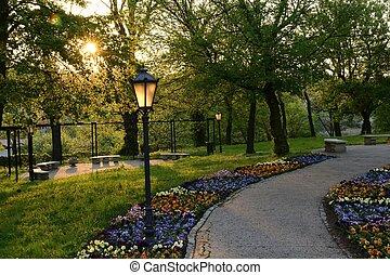 verde, parques, em, polônia