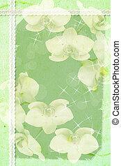 verde, primavera, plano de fondo, con, flores