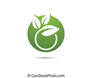 verde, símbolo, folha, ilustração