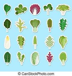 verde sai, adesivos, caricatura, salada