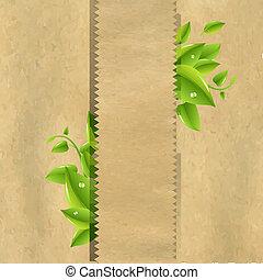 verde sai, papel, antigas