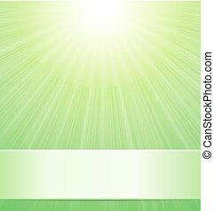 verde, soleggiato, fondo, natura