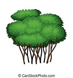 verde, tronco, árbol, ilustración, vector, follaje, ...