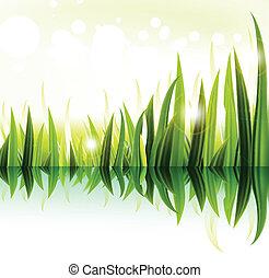verde, vector, diseño, pasto o césped